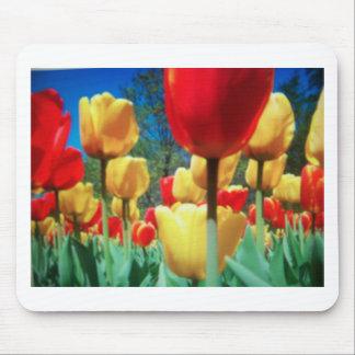 tulipes jaunes et rouges tapis de souris
