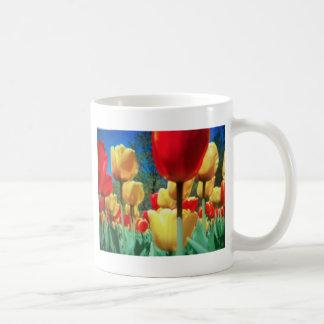tulipes jaunes et rouges tasse