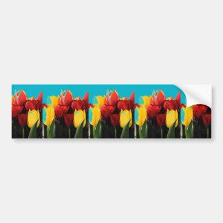Tulipes jaunes rouges autocollant de voiture