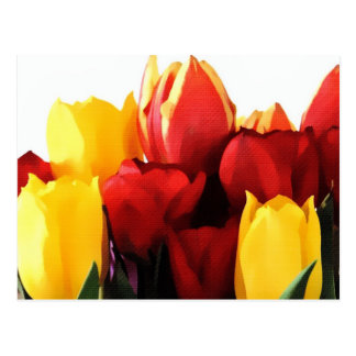 Tulipes jaunes rouges cartes postales