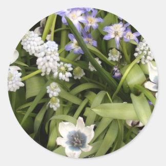 Tulipes néerlandaises bleues et blanches sticker rond