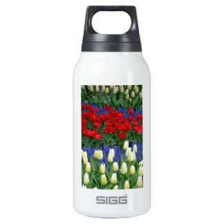 Tulipes rouges et blanches de ressort