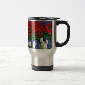 Tulipes rouges et blanches de ressort tasses
