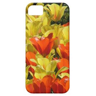 Tulipes rouges et jaunes coque Case-Mate iPhone 5
