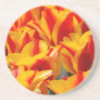 Tulipes rouges et jaunes dessous de verre