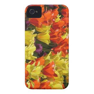 Tulipes rouges et jaunes étuis iPhone 4