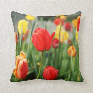 Tulipes rouges et jaunes mélangées de ressort oreiller