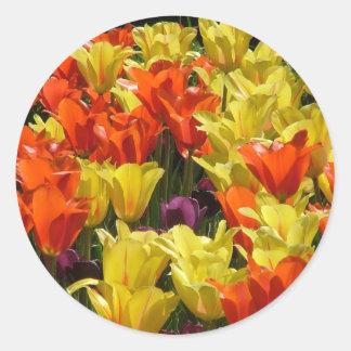 Tulipes rouges et jaunes sticker rond