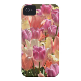 Tulips #2 iPhone 4 cases