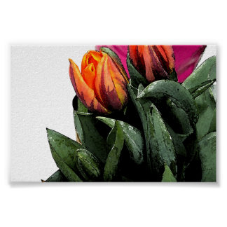 Tulips Again Poster