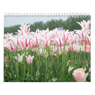 tulips all year round wall calendars