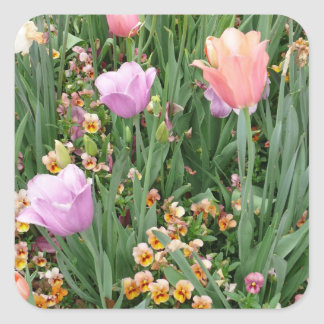 Tulips and Pansies Square Sticker