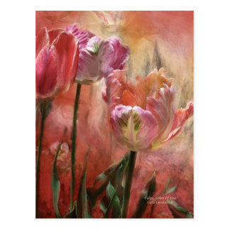 Tulips Colors Of Love Art Postcard