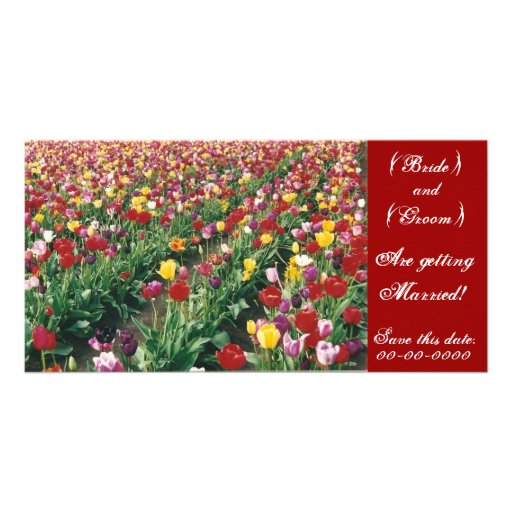 Tulips Customizable Save This Date Photo Card