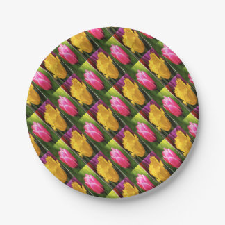 Tulips Flowers Paper Plate
