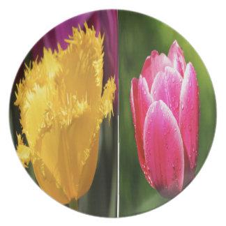 Tulips Flowers Plate