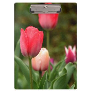 Tulips Garden Clipboard