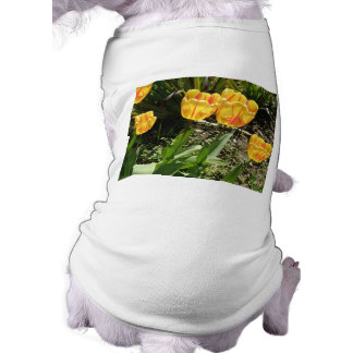 Tulips in the sun Doggie T Shirt