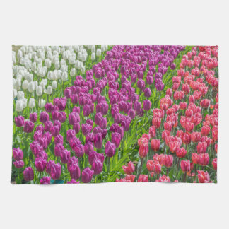 Tulips in three colours kitchen towel