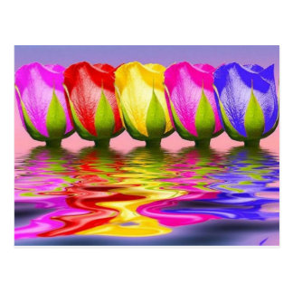 tulips in water postcard