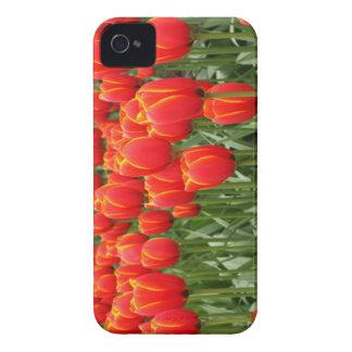 Tulips iPhone 4 Case-Mate Case