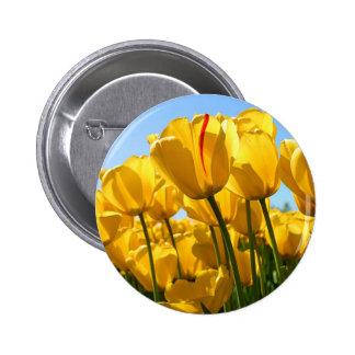 Tulips jpg pinback button