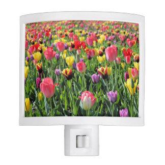 Tulips Night Light
