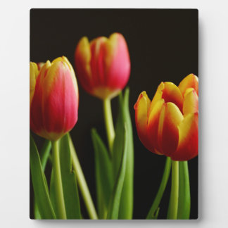 tulips plaque