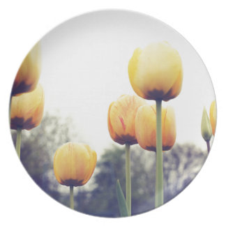 tulips plate