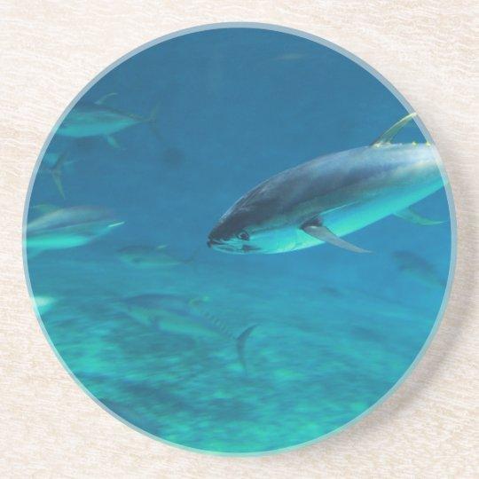 Tuna underwater coaster
