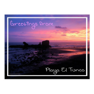 Tunco Postcard - Purple Haze