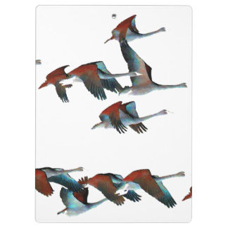 Tundra Swan Birds Wildlife Animals Clipboards