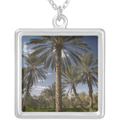Tunisia, Ksour Area, Ksar Ghilane, date palm 2 Personalized Necklace