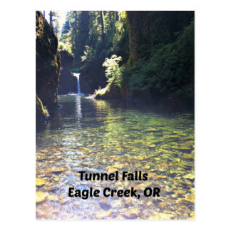 Tunnel Falls, Eagle Creek, Oregon Postcard