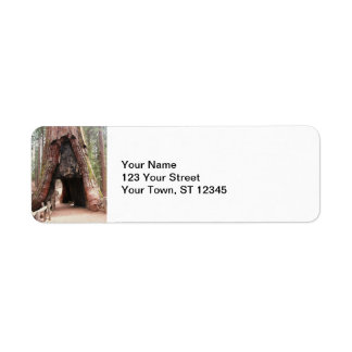 Tunnel Tree- Yosemite Return Address Label