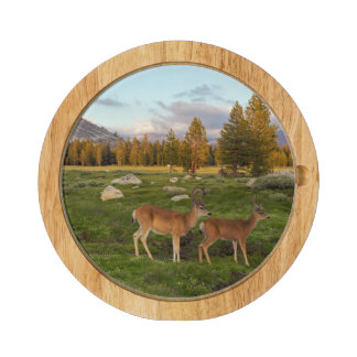 Tuolumne Meadow, Yosemite Rectangular Cheeseboard