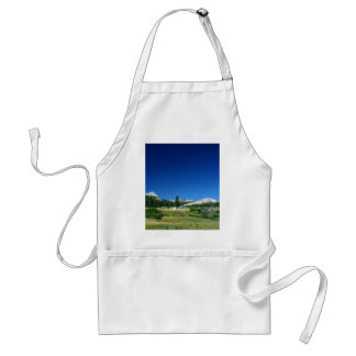 Tuolumne Meadows With The Moon Setting Standard Apron