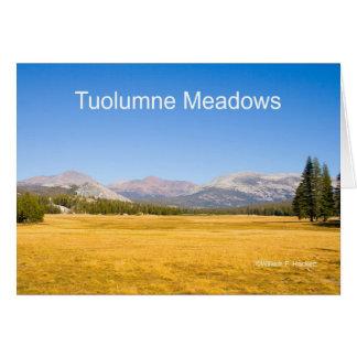 Tuolumne Meadows Yosemite California Products Card