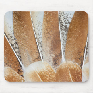 Turkey Feather Fanned Design Mouse Pad
