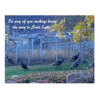 Turkey Navigation - Utah Postcard