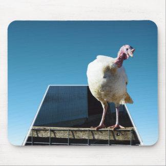 Turkey Popout Art, Mouse Pad