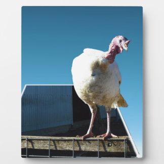 Turkey Popout Art, Plaque