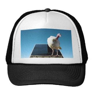 Turkey Popout Art, Trucker Hat