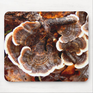 Turkey Tails Fungi Mouse Mat