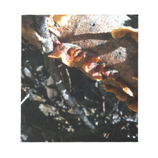 Turkey Tails Notepad