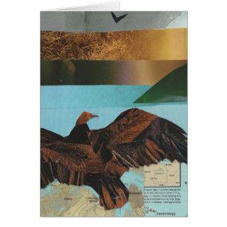 Turkey Vulture Card