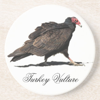 TURKEY VULTURE COASTER