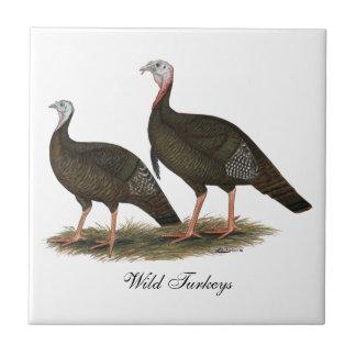Turkeys Eastern Wild Pair Tile