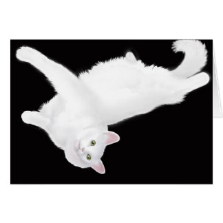 Turkish Angora Cat Lounging Card