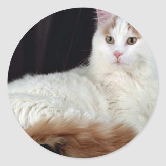 Turkish Van Classic Round Sticker